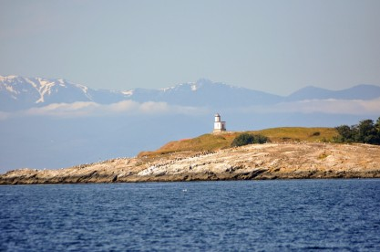 Cattle Point light house.